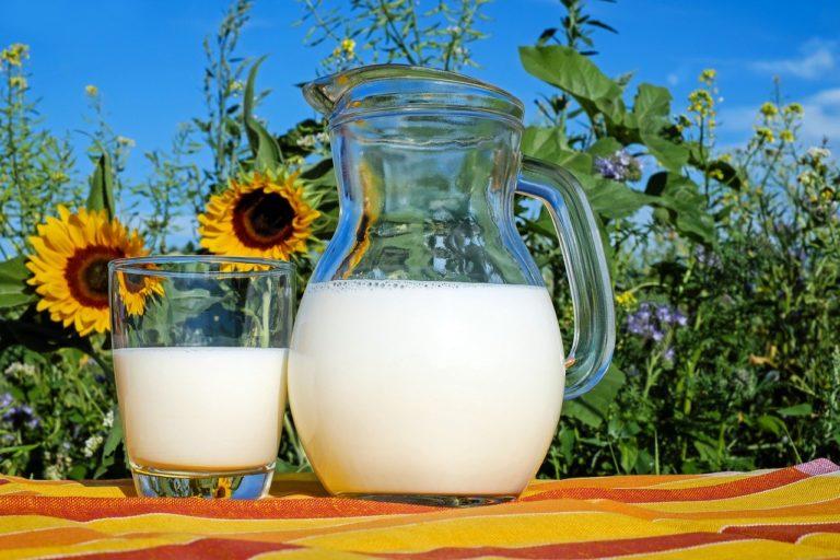 Молочные продукты в рационе: быть или не быть?