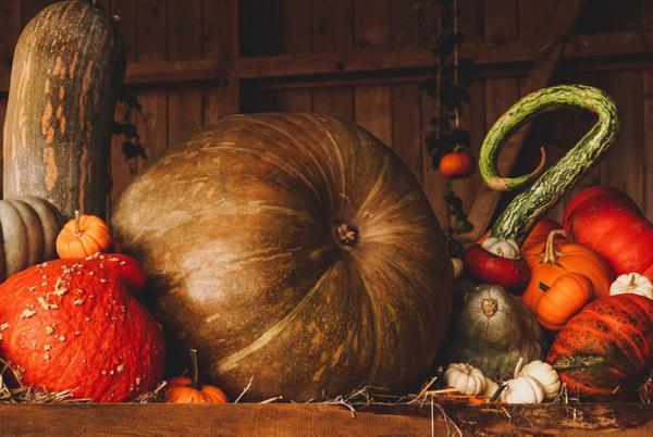 5 причин использовать тыкву для похудения