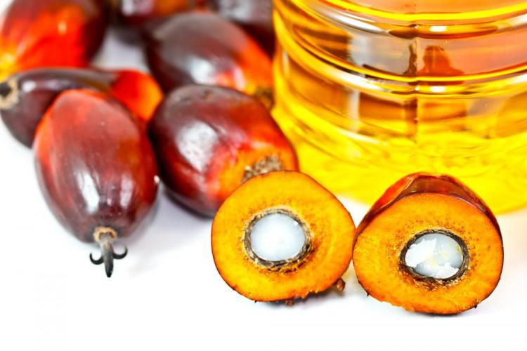 Опасные продукты с пальмовым маслом