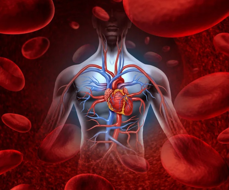 Витаминная бомба: сок, который немедленно очищает кровь