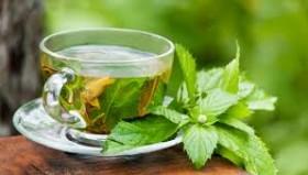 Чай из мяты противопоказания