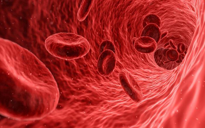 Лучшие питательные вещества для разжижения крови