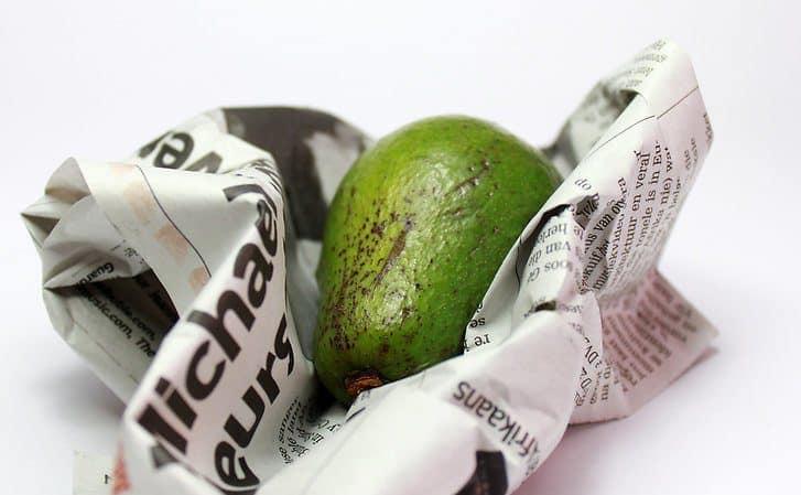 Ускорьте созревание авокадо с помощью газеты
