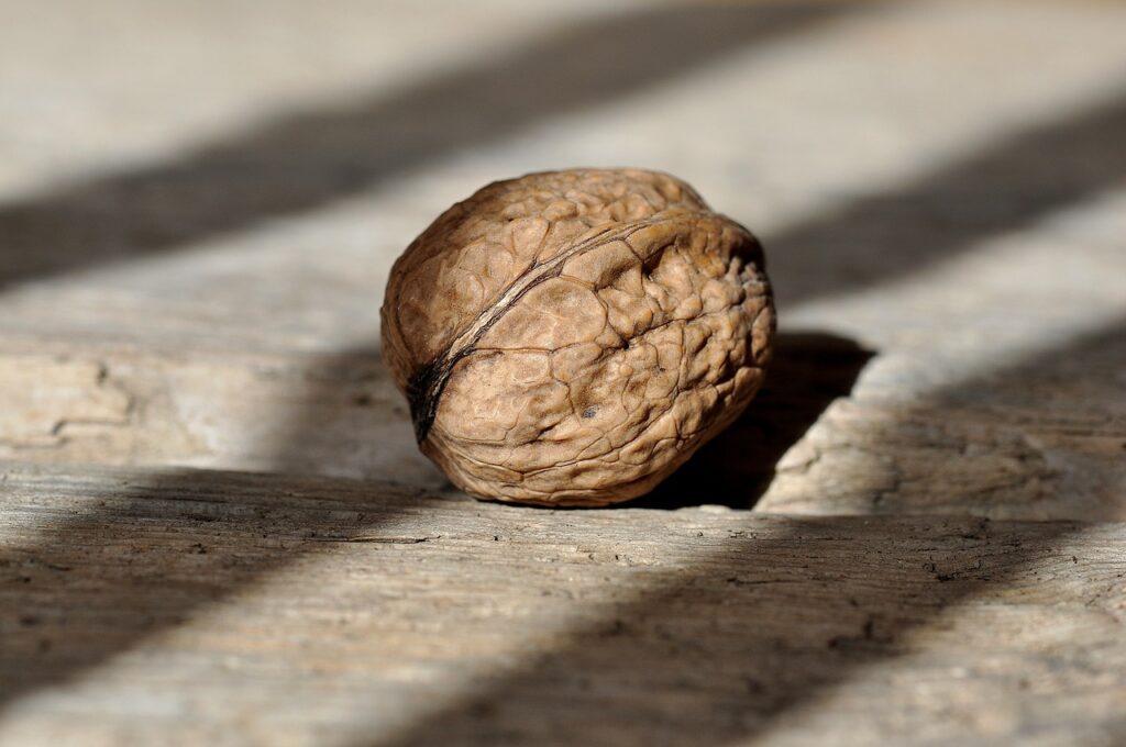 Грецкие орехи помогают организму очиститься от токсинов