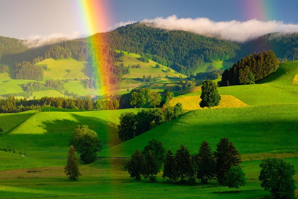 Почему в радуге семь цветов?